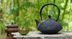 健康小知识|夏日必备 喝茶养生方