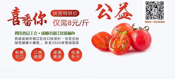 夏日炎炎,有你最甜·番茄