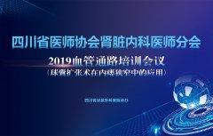 四川省医师协会肾脏内科医师分会2019血管通路培训会议精彩瞬间
